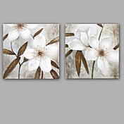Pintada a mano Abstracto / Floral/Botánico Pinturas de óleo,Modern / Clásico Dos Paneles Lienzos Pintura al óleo pintada a colgar For