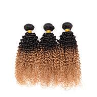Ljudska kosa Indijska kosa Ombre Kinky Kovrčavi umetak Ekstenzije za kosu 3 komada # T1B -27