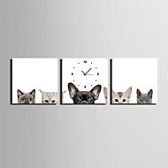 Moderni/nykyaikainen Eläimet Seinäkello,Neliö Kanvas 25 x 25cm(10inchx10inch)x3pcs Sisällä Kello