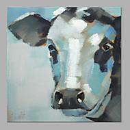 מצויר ביד בעלי חיים אומנותי פנל אחד בד ציור שמן צבוע-Hang For קישוט הבית