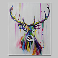 Kézzel festett Absztrakt Állat Pop Függőleges,Modern Egy elem Hang festett olajfestmény For lakberendezési