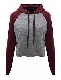 Damen Kapuzenshirt Lässig/Alltäglich Solide Einfarbig Rundhalsausschnitt Mikro-elastisch Baumwolle Lange Ärmel Frühling