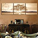 ieftine Picturi Faimoase-Modern/Contemporan Lemn Plastic Altele Interior/Exterior,AA
