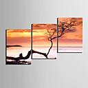 hesapli Tablolar-Gerdirilmiş Tuval Resmi Kanvas Set Çiçek/Botanik Modern, Üç Panelli Tuval Yatay Boyama Duvar Dekor Ev dekorasyonu