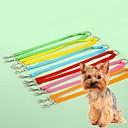 baratos Colares, Coleiras e Peitorais para Cães-Gato Cachorro Trelas Retratável Fantasias Náilon Amarelo Vermelho Verde Azul Rosa claro