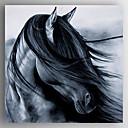 tanie Obrazy: motyw zwierzęcy-Hang-Malowane obraz olejny Ręcznie malowane - Zwierzęta Nowoczesny Naciągnięte płótka / Rozciągnięte płótno