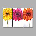 preiswerte Landschaften-Hang-Ölgemälde Handgemalte - Blumenmuster / Botanisch Modern Segeltuch
