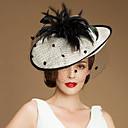 preiswerte Hochzeit Schals-Flachs Hüte mit Federn / Pelzl 1 Kopfschmuck