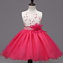 preiswerte Kleider für Mädchen-Mädchen Kleid-Formal Patchwork Polyester Sommer / Winter / Frühling / Herbst Rosa / Rot