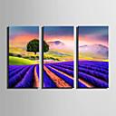 お買い得  プリント-風景 花柄/植物の 近代の, 3枚 キャンバス 縦式 プリント 壁の装飾 ホームデコレーション