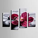 olcso Képek-Nyomtatás Hullámos vászonnyomtatás - Virágos / Botanikus Modern