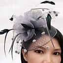 cheap Party Headpieces-Feather / Net Fascinators / Birdcage Veils 1 Wedding / Party / Evening Headpiece