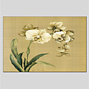 cheap Floral/Botanical Paintings-Oil Painting Hand Painted - Floral / Botanical Classic Canvas