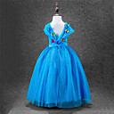 זול אספקה למסיבות-Cinderella שמלות / תחפושת למסיבה חג המולד / נשף מסכות פסטיבל / חג תחפושות ליל כל הקדושים כחול אחיד סליפ שמלת נשף / שבכה מקסים