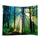 levne Nástěnné tapiserie-Krajina Klidný život Wall Decor 100% polyester Klasické tradiční Wall Art, Nástěnné tapiserie z