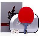 זול שולחן טניס-DHS® Hurricane HAO FL Ping Pang/מחבטי טניס שולחן עץ סיבי פחמן גוּמִי ידית ארוכה פצעונים