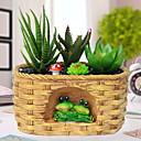 ieftine Flori Artificiale-Flori artificiale 1 ramură Clasic Modern / Contemporan / stil minimalist Florile veșnice / Plante suculente Față de masă flori