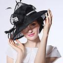 halpa Vanhan maailman asut-Elizabeth Ihmeellinen rouva Maisel Naisten Aikuisten naiset Retro / Vintage Feather Net Hat Kentucky Derby Hat Fascinator Hat Hat Musta Kukka Headwear Lolita Tarvikkeet