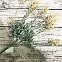 abordables Fleur artificielles-Fleurs artificielles 1 Une succursale Classique Moderne Fleurs éternelles Fleur de Table