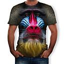 halpa Cosplay-rooliasut arkeen-Valtaistuinpeli Cosplay T-paita Miesten Elokuva Cosplay Harmaa T-paita Halloween Teryleeni