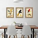 halpa Kehystetty taide-Kehystetty taidepainate Kehystetty setti - Eläimet Polystyreeni Illustration Wall Art