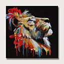 זול ציורים מופשטים-ציור שמן צבוע-Hang מצויר ביד - מופשט חיות מודרני ללא מסגרת פנימית