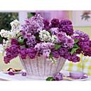 ราคาถูก อุปกรณ์ตกแต่งผนัง-ดอกไม้ / พฤกษศาสตร์ภาพวาดเพชร diy, ชุดภาพวาดเพชรสำหรับผู้ใหญ่