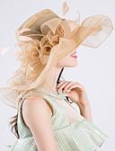 preiswerte Abendkleider-Feder / Seide / Organza Kentucky Derby-Hut / Fascinatoren / Hüte mit 1 Hochzeit / Besondere Anlässe / Party / Abend Kopfschmuck