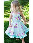 preiswerte Kleider für Mädchen-Mädchen Kleid Geburtstag Alltag Festtage Blumen Baumwolle Sommer Ärmellos Blumig Leicht Blau