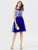 cheap Prom Dresses-Princess Jewel Neck Short / Mini Tulle Cocktail Party / Homecoming / Prom / Black Tie Gala / Holiday Dress with Beading Appliques Pleats