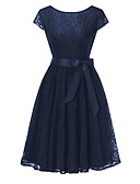 ieftine Romantic Lace-Pentru femei Vintage / De Bază Zvelt Pantaloni - Mată Dantelă / Eliminat / Broderie Roz Îmbujorat
