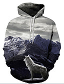 cheap Men's Hoodies & Sweatshirts-Men's Plus Size Active / Exaggerated Long Sleeve Loose Hoodie - 3D / Cartoon Print Hooded Gray 4XL / Fall / Winter
