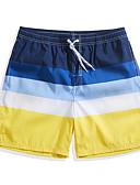 お買い得  メンズTシャツ&タンクトップ-男性用 スイミングトランクス スイムショーツ 高通気性 超軽量(UL) 速乾性 POLY スイムウェア ビーチウェア ボードショーツ ボトムズ 縞柄 サーフィン ビーチ ウォータースポーツ