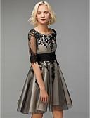 billige Ballkjoler-A-linje Scoop Neck Kort / mini Tyll Cocktailfest Kjole med Appliqué / Bølgemønster av TS Couture®