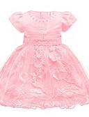 Χαμηλού Κόστους Βρεφικά φορέματα-Μωρό Κοριτσίστικα Ενεργό / Βασικό Πάρτι / Γενέθλια Μονόχρωμο Δαντέλα Κοντομάνικο Πάνω από το Γόνατο Βαμβάκι / Πολυεστέρας Φόρεμα Βυσσινί
