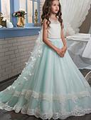 Χαμηλού Κόστους Λουλουδάτα φορέματα για κορίτσια-Βραδινή τουαλέτα Ουρά Φόρεμα για Κοριτσάκι Λουλουδιών - Πολυεστέρας Αμάνικο Με Κόσμημα με Διακοσμητικά Επιράμματα / Φιόγκος(οι) / Δαντέλα με LAN TING Express