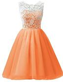 זול שמלות לילדות פרחים-שמלה ללא שרוולים תחרה / קפלים סרוג Party מתוק בנות ילדים