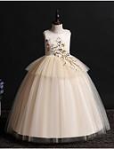 זול שמלות לילדות פרחים-נסיכה עד הריצפה שמלה לנערת הפרחים  - פולי / טול ללא שרוולים עם תכשיטים עם אפליקציות על ידי LAN TING Express