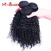 人間の髪編む ブラジリアンヘア Kinky Curly ヘア織り