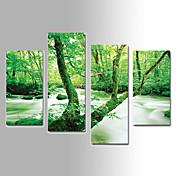 風景画 キャンバスプリント 4枚 ハングアップする準備ができました,縦式