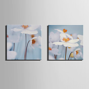 canvas Set Floral/Botânico Moderno,2 Painéis Tela Quadrangular Impressão artística wall Decor For Decoração para casa