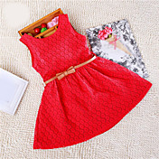 Vestido Chica de Un Color Sin Mangas Verano De Encaje Blanco Morado Rojo Rosa