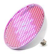 E27 LEDグローライト 800 SMD 3528 4000-5000 lm レッド ブルー V 1個