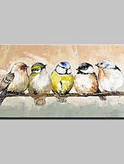 手描きの 動物 横式,抽象画 近代の 1個 キャンバス ハング塗装油絵 For ホームデコレーション