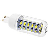 billige Kornpærer med LED-450-490 lm G9 LED-kornpærer T 36 leds SMD 5730 Kjølig hvit AC 220-240V