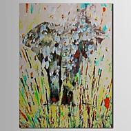 Χαμηλού Κόστους Artist - M.Xander-Ζωγραφισμένα στο χέρι Ζώο Μονόπτυχα Καραβόπανο Hang-ζωγραφισμένα ελαιογραφία For Αρχική Διακόσμηση