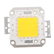 billige belysning Tilbehør-zdm diy 20w 1600-2000lm varm hvit / kald hvit / naturlig hvitt lys integrert ledermodul (dc33-35v 0.5-0.6a) gatelampe for å projisere lett gullveis sveising av kobberbrakett
