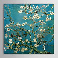 billiga Blom-/växtmålningar-HANDMÅLAD Känd Fyrkantig,Moderna Traditionellt Europeisk Stil En panel Kanvas Målning For Hem-dekoration