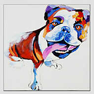 Oil Painting Cool Dog Style , Canvas Material with Stretched Frame Ready To Hang SIZE:70*70CM.