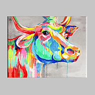 Oil Painting Color Cow Head Hand Painted Canvas with Stretched Framed Ready to Hang
